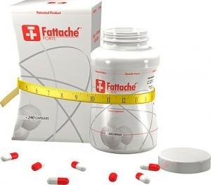Fattache Forte (240 stuks)