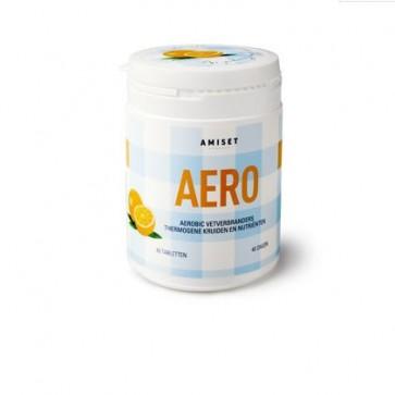 Amiset Aero