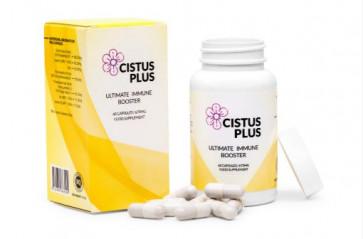 Cistus Plus