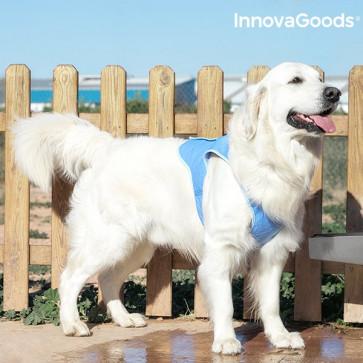 Verkoelend Vest voor Honden