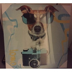 Schilderij: Photographer dog 40 x 40 cm