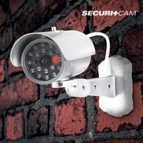 Securitcam M1000, Fake Security Camera